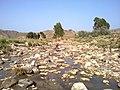 Navidhand new 406 - panoramio.jpg