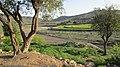 Navidhand village 2013 pic 28 - panoramio (1).jpg