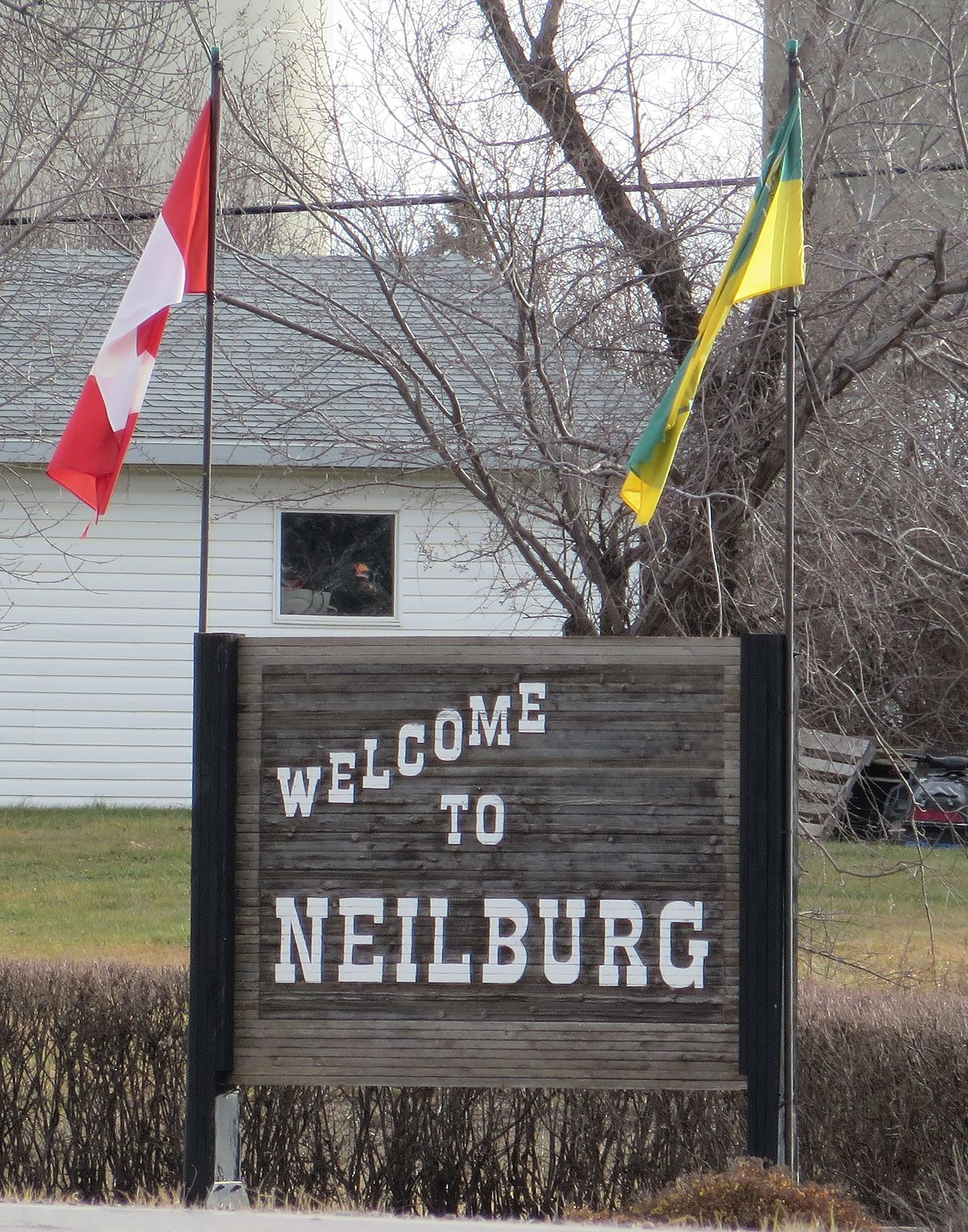 neilburg chat sites Contact ruth freeman to add your farm or service to the draft horse connection directory breeders  neilburg, sk s0m 2c0, (306  come by and have a chat.