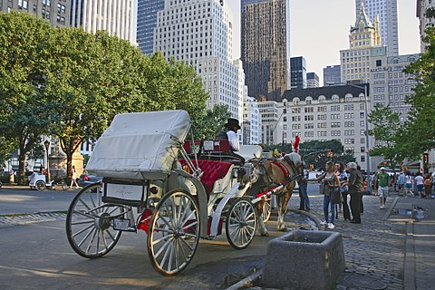 Horsedrawn carriage by the park New York. Central Park. Carriage (4249565692).jpg