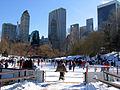 New York. Central Park. Wollman Rink (2797774778).jpg