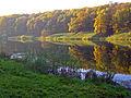 Nizhny Novgorod. Golden Autumn in Shcholkovsky Hutor Forest Park.jpg
