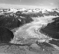 Norris Glacier, terminus of valley glacier with trimline along the valley walls, August 26, 1960 (GLACIERS 6027).jpg