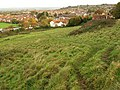 Northern slopes of Wearyall Hill - geograph.org.uk - 1027708.jpg