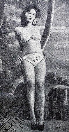 Hot Nurnaningsih naked (58 fotos) Video, 2016, in bikini