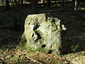 Nutball Stone, Cannimore Road, Warminster - geograph.org.uk - 298150.jpg
