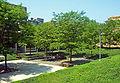 OCGC atrium.jpg