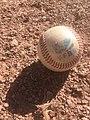 Official French FFBS baseball ball on schist (1).jpg