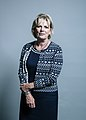 Official portrait of Anna Soubry.jpg