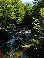 Ogosta River 01094.JPG