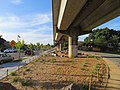 Ohlone Greenway and R-Line viaduct, May 2018.JPG