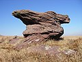 Old Red Sandstone - geograph.org.uk - 691679.jpg