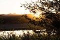 Oranjefloden-0550 - Flickr - Ragnhild & Neil Crawford.jpg