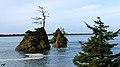 Oregon Coast (8237507145).jpg