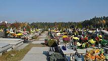 PL - Mielec - cmentarz komunalny - 2011-11-02 - 008.JPG