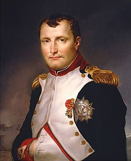 Painting of Napoleon Bonaparte by Jacques-Louis David, 1813.jpg