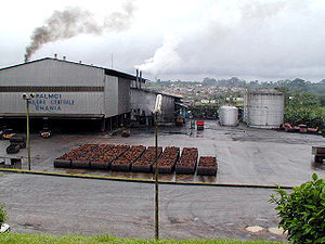 Palm oil factory in Aboisso