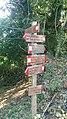 Palo segnaletica verticale CAI Foce di San Rocchino - Alpi Apuane.jpg