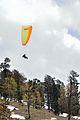 Paragliding - Gulaba - Kullu 2014-05-10 2482.JPG