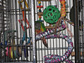 Parrot in cage with toys and ropes.jpg