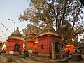 Pashupatinath Temple IMG 1496 24.jpg