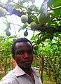 Pasion fruit gardener.jpg