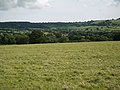 Pasture, looking South towards Batcombe Hill - geograph.org.uk - 489826.jpg
