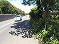 Pentir, UK - panoramio (25).jpg
