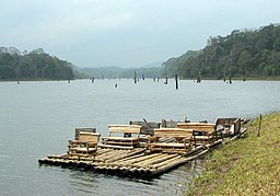 Periyar National Park 01.jpg
