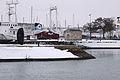 Perrés de l'avant-port de La Rochelle sous la neige (1).JPG