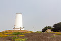 Piedras Blancas Lighthouse (05).jpg