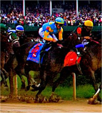 Pioneerof the Nile - Pioneerof the Nile running in the 2009 Kentucky Derby