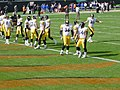 Pittsburgh Steelers offensive line 2002.jpg