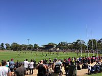 Playford Alive Oval.jpg