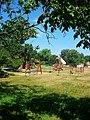 Playground, Hortobágy 04.JPG
