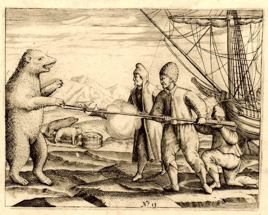 Polar bear, Gerrit de Veer (1596)
