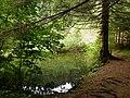 Prírodná pamiatka - Jazierce - panoramio.jpg