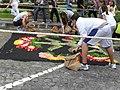 Preparasion de alfombra de petalos - panoramio (1).jpg