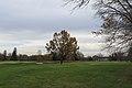 Princeton (8270039473).jpg