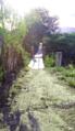 Puente de amaca en Olopita, Esquipulas.png