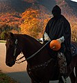 Pumpkins in the Park 2011 (8050862671).jpg