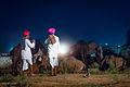 Pushkar - India (11832705125).jpg