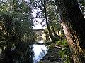 Río Verdugo ao seu paso por Pontecaldelas.jpg