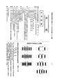 ROC1968-10-01道路交通標誌標線號誌設置規則5.pdf