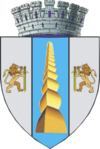 Coat of arms of Târgu Jiu