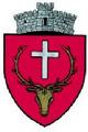 ROU SV Dorna Candrenilor CoA.png