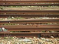 Rails - by Les Chatfield.jpg