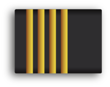 Ranks Dutch police wikimedia by venturedesign 300dpi Hoofdagent.png