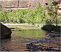 Reflections, Zion NP, Riverside Walk 5-1-14ka (14221201938).jpg