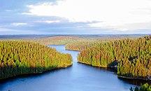 フィンランド-地理-Repoveden Kansallispuisto Kesayonauringossa